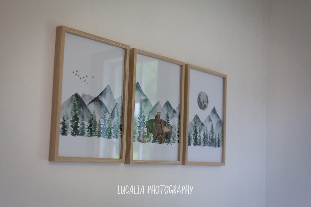 forest artwork baby room, Mount Holdsworth, Wairarapa family photographer