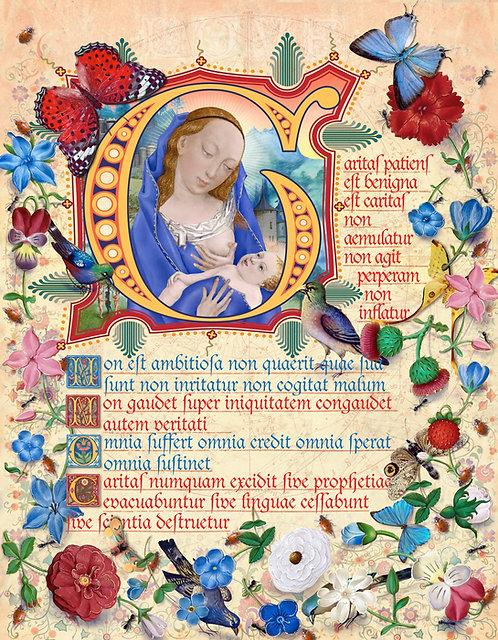 Love Is Kind Latin, illumination manuscript print, by Capio Lumen