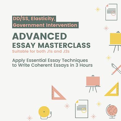 DDs_SS Elas Govt Int Essay Class.png