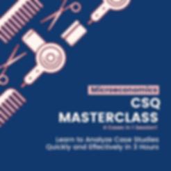 Microecons CSQ Class.png