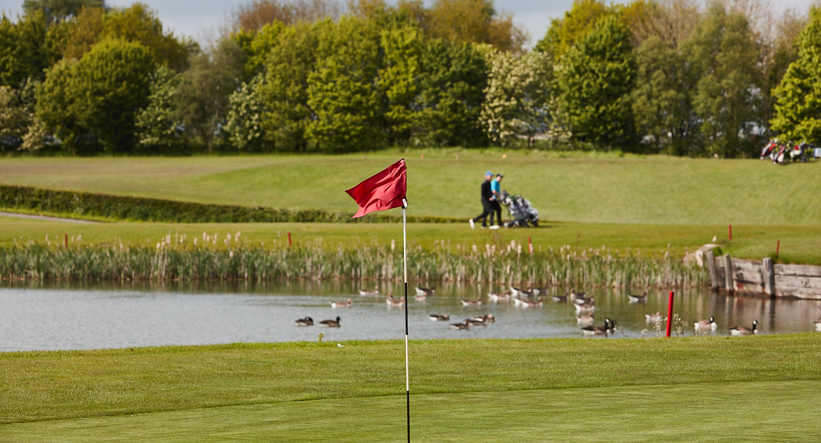 Golf Course -147.jpg