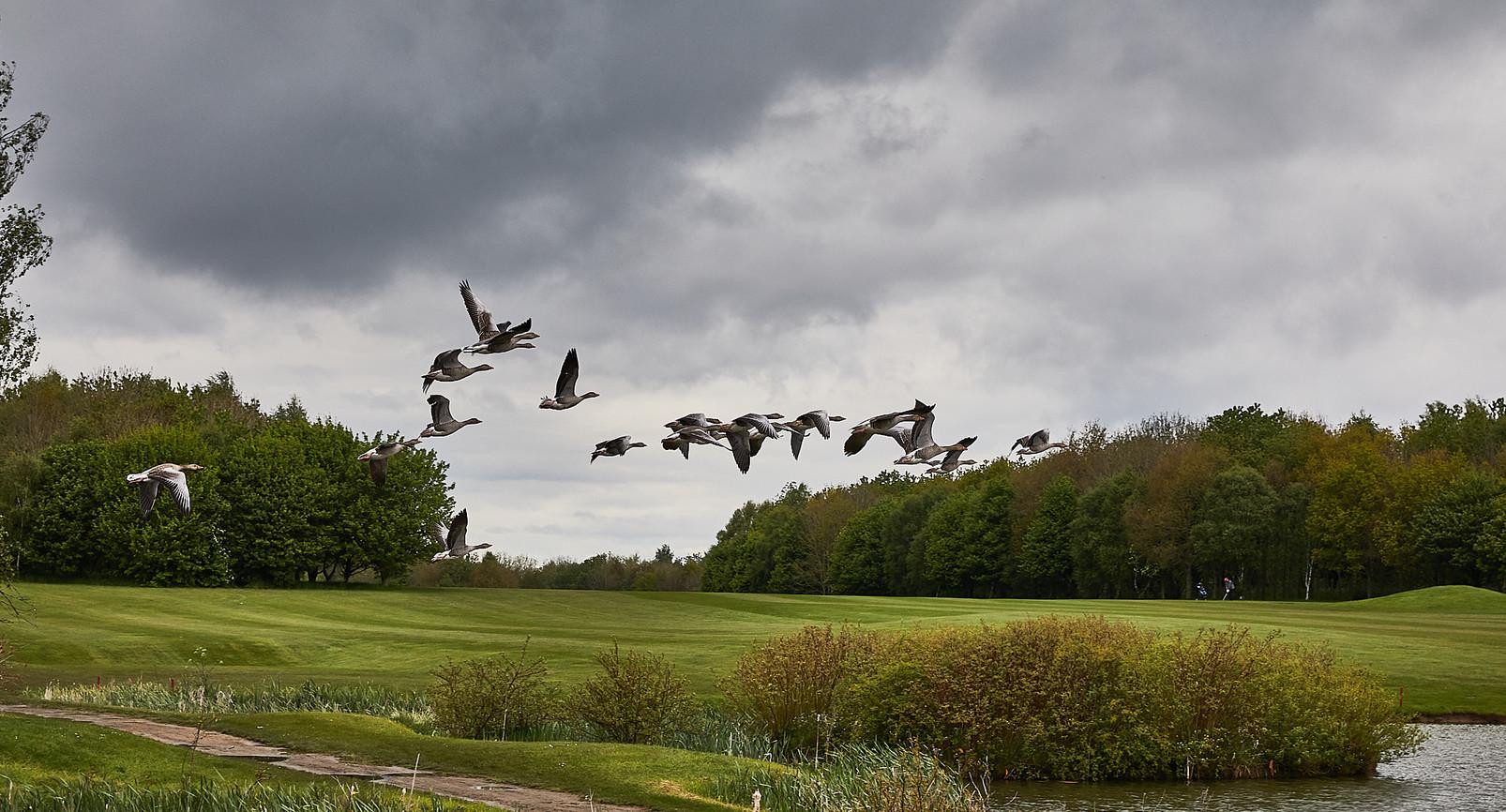 Golf Course -207.jpg