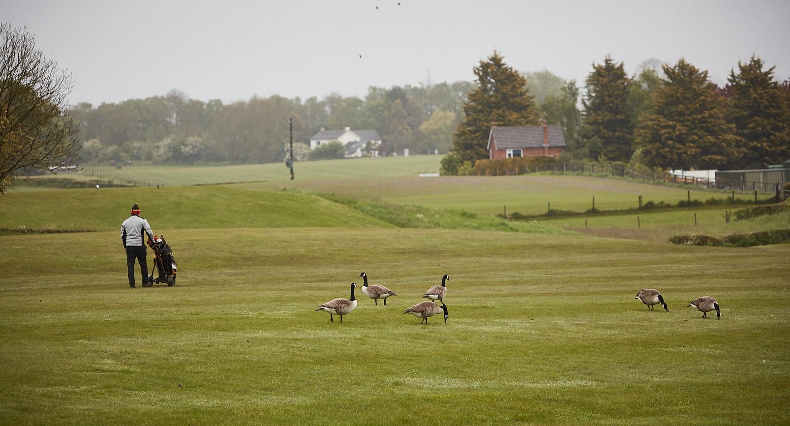 Golf Course -008.jpg