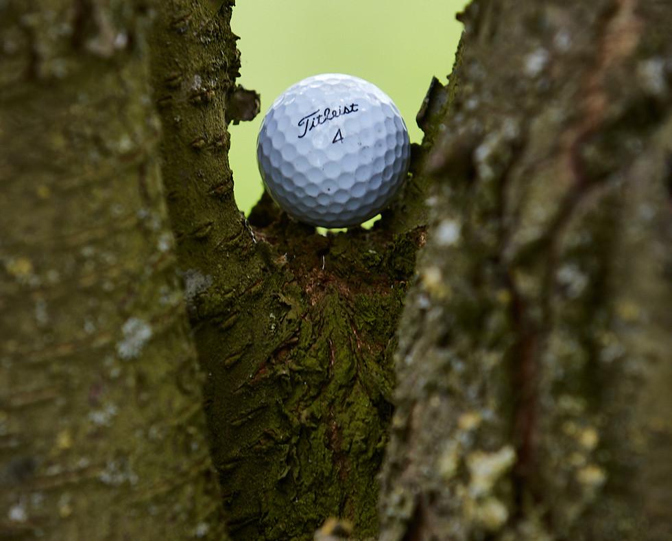 Golf Course -095.jpg
