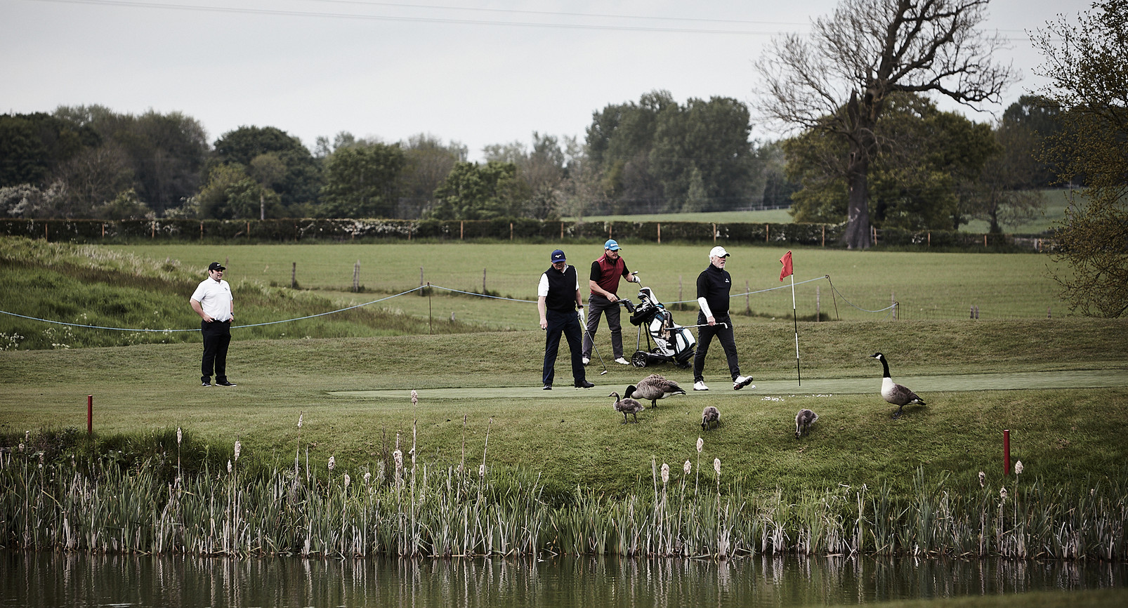 Golf Course -084.jpg