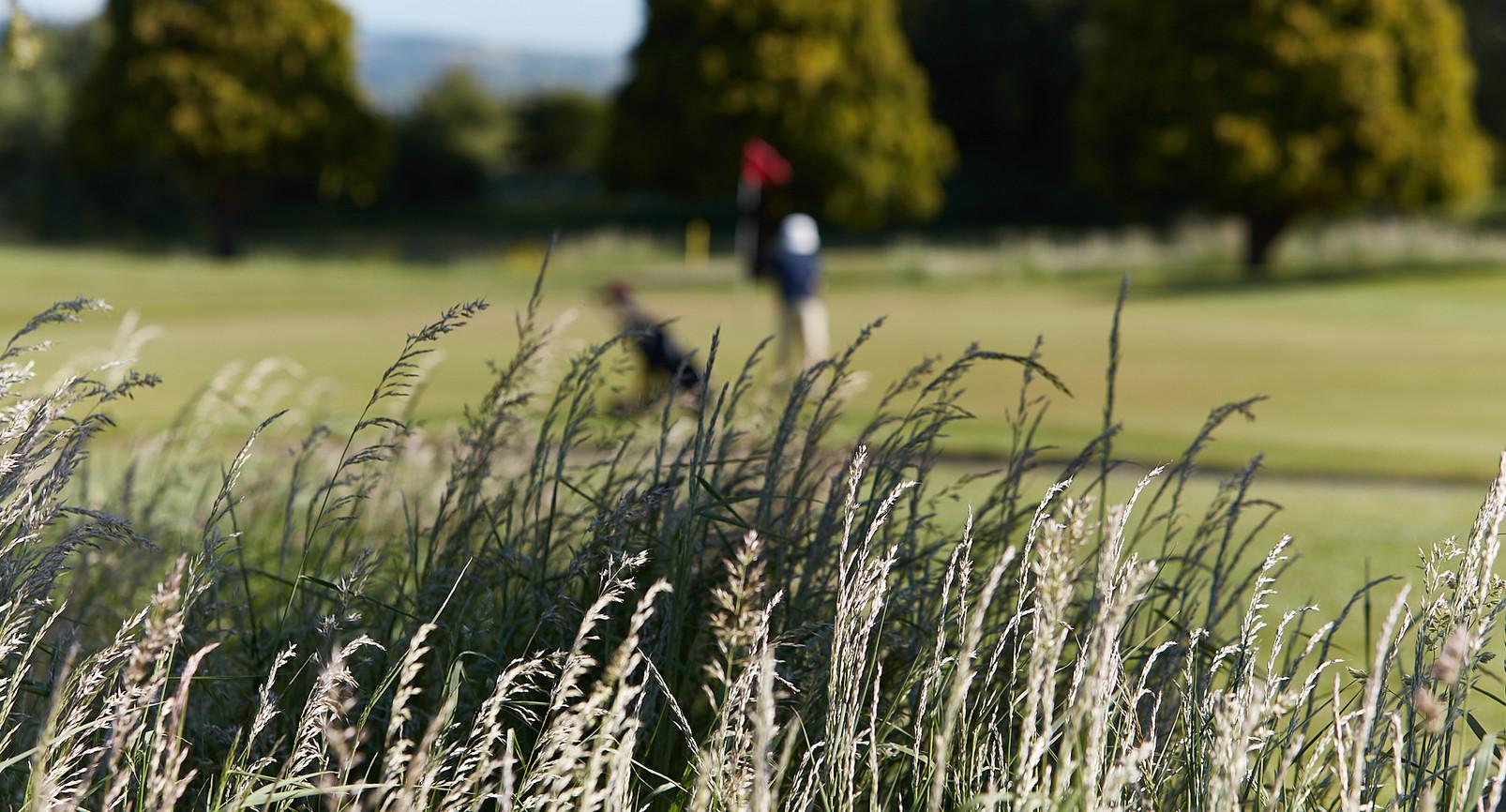 Peterstone Lakes Golf Club-003.jpg