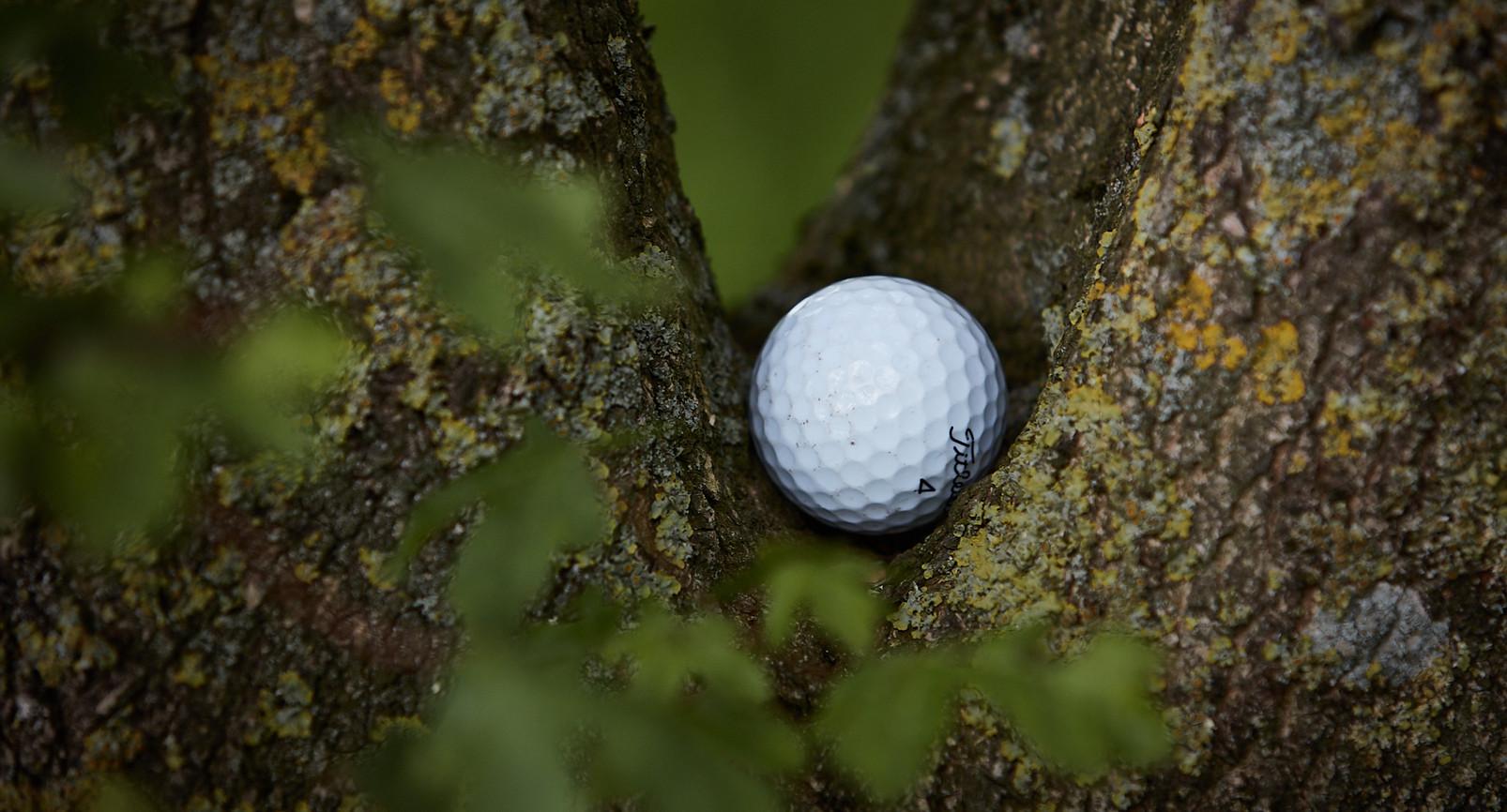 Golf Course -099.jpg