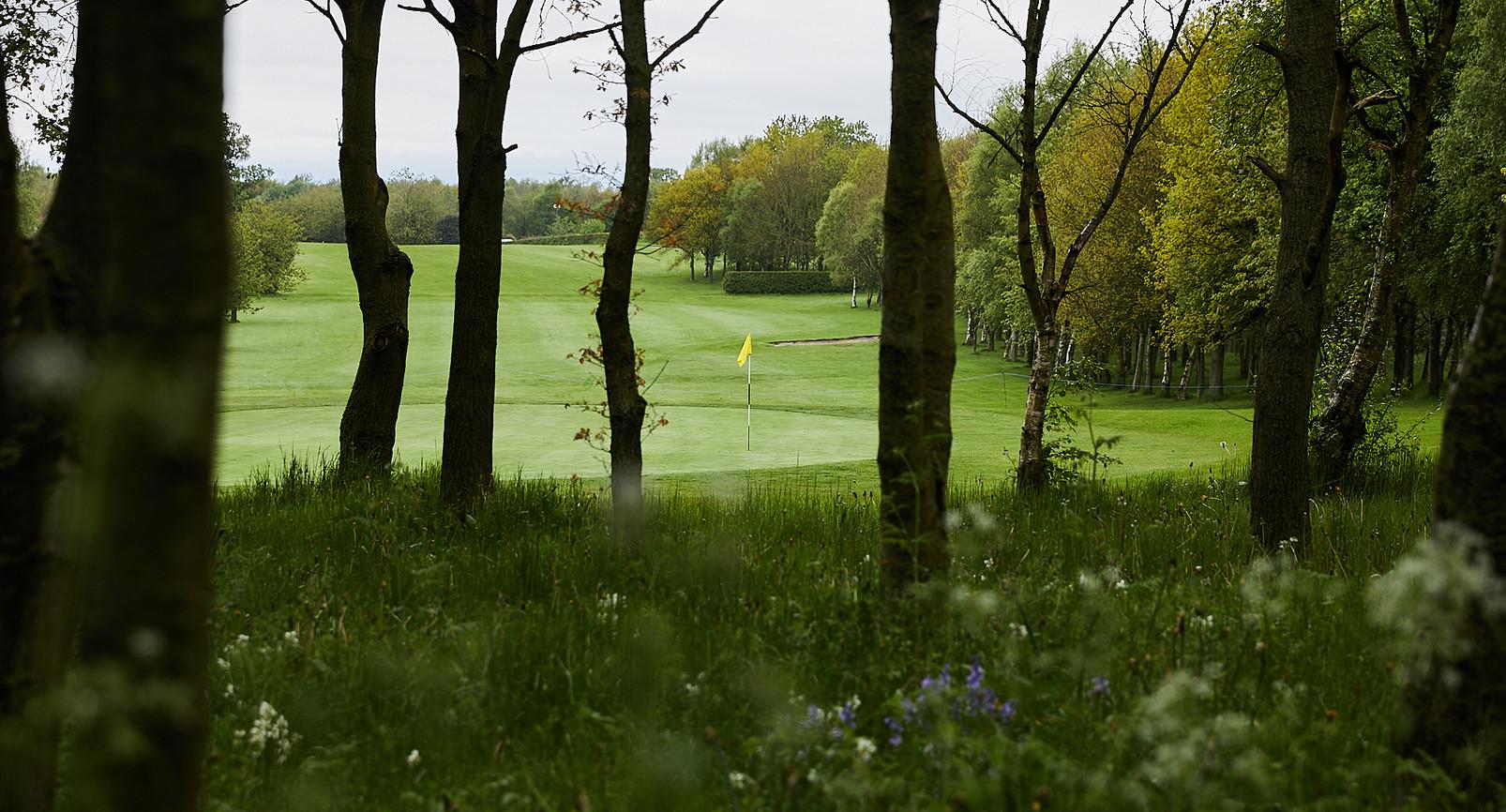 Golf Course -018.jpg