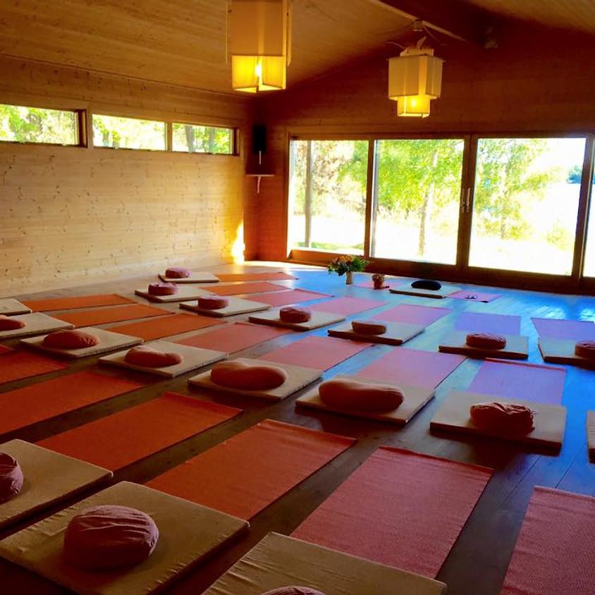 Mindfulness, a silent retreat