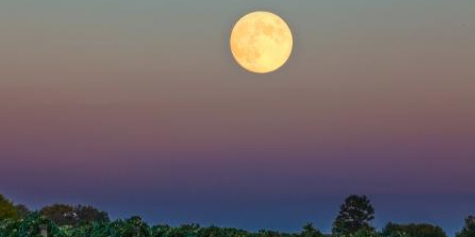 MoonStruck - Full Moon Pizza Party with Live Music by Jenifer Kinder