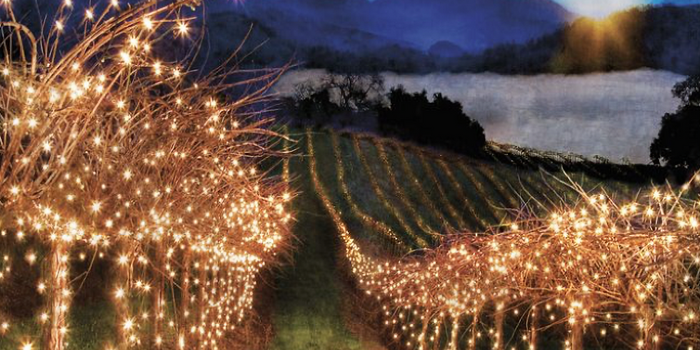 Light the Vineyard Pizza Party
