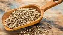 il BARATTO delle sementi