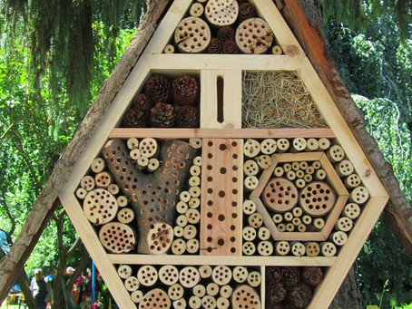 Insect Hotels + Solitary Bee Habitats