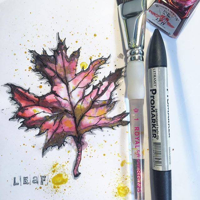 Autumnal Leaf #inktober #illustration #natalieann #autumn #leaf #autumncolours