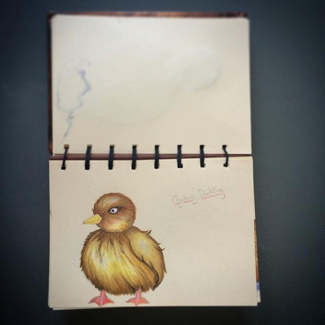Baby Duckling #sketchbook #update #duck #natalieannillustration #colourpencils #childrensgifts