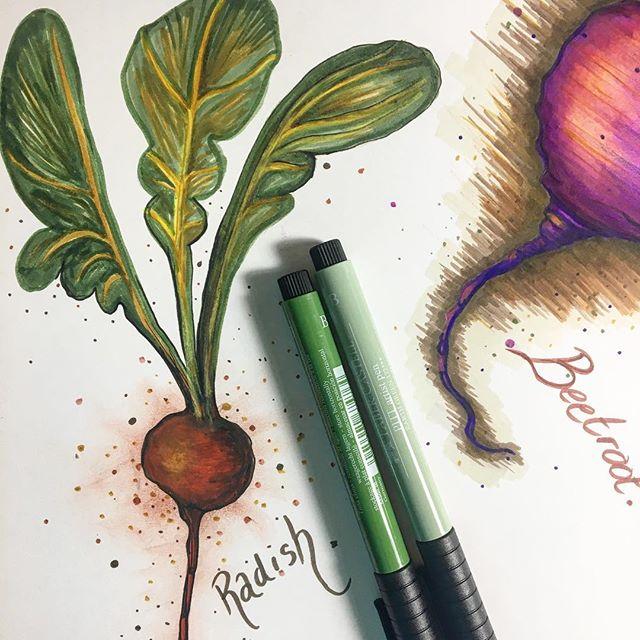 Radish #radish #autumnvegetables #autumn #autumcolourpalette #red #natalieann #gardrnvegetables #the