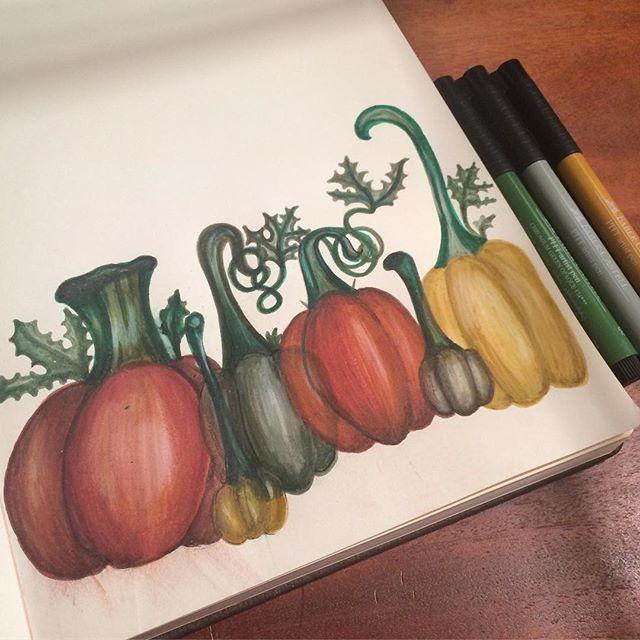 #inktober 🍂 Pumpkins galore! Last weekend I went to _roundstonefarmshop to pick my own pumpkins 🎃