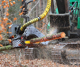 The harvester working in a forest. Close