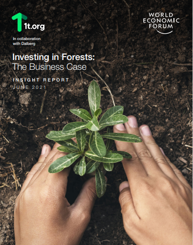Investing in forests, the business case for natural capital outcomes.