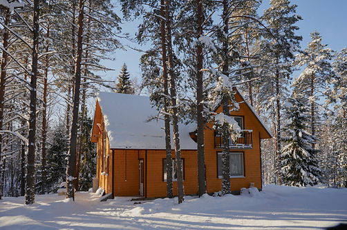 detached two-storey log cabin, with an attic, a beautiful house painted brown, surrounded