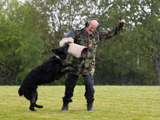 Constable Steve Waters demonstrates his dog Rudi's skills during a media open day to showcase policing activities for the upcoming in person G7 Summit at the Police headquarters in Exeter