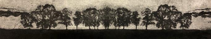Scottish Trees