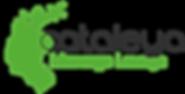 Cataleya_Logo_Treathwell_png.png