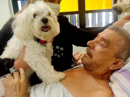 Paciente recebe visita de cachorro de estimação no Centro Hospitalar Municipal de Santo André