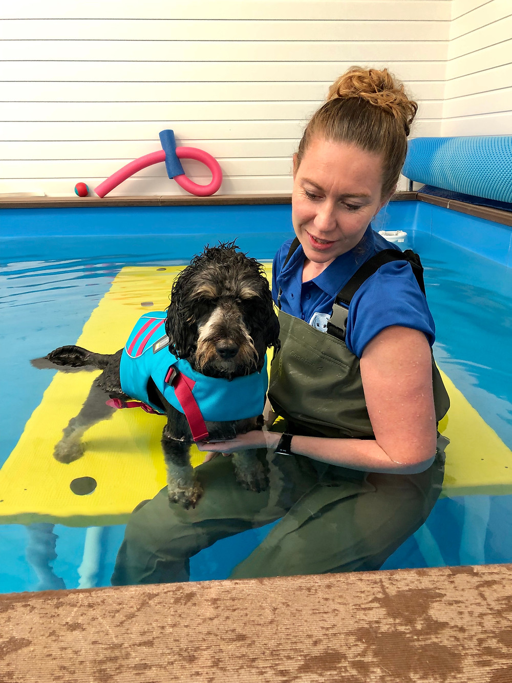 Hydrotherapist cuddling dog wearing a life jacket, in a pool.