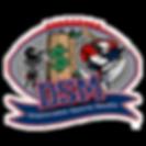 DSM_WEB.png