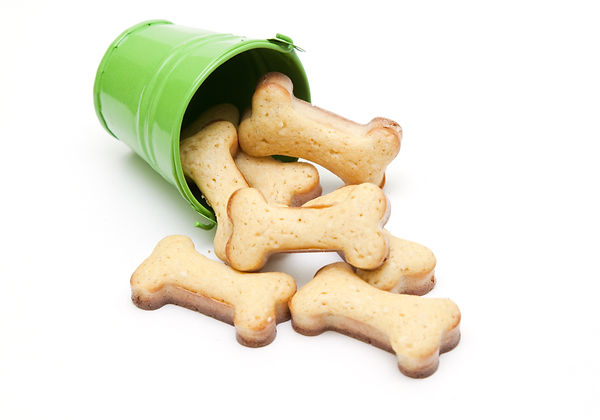Home made dog biscuit in bucket Isolated