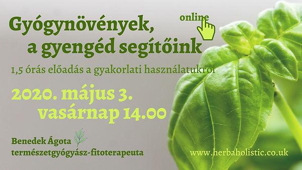 Gyógynövények cover1.jpg