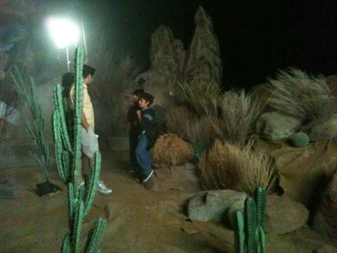 Rehearsal in the Desert