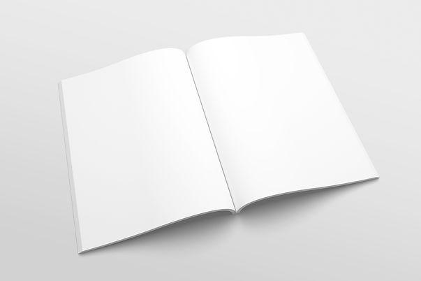 Livre blanc - bonnes pratiques PAD consu