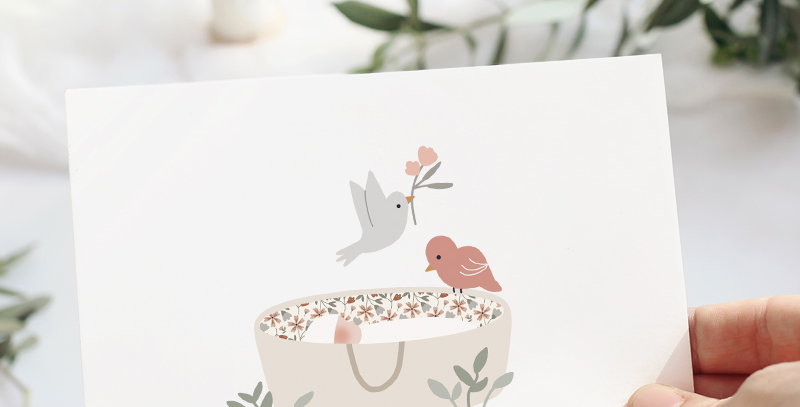 Carte postale - Post card - Sur mon berceau Rose