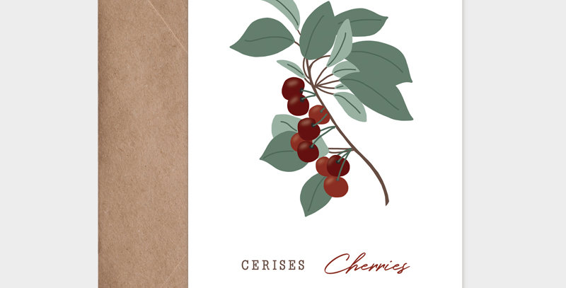 Carte postale - Post card - fruit de saison cerises-cherries