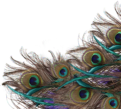 Peacock-Feather-PNG-File_edited.png
