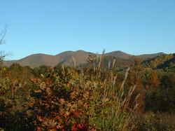 Asheville Mountain Home Community