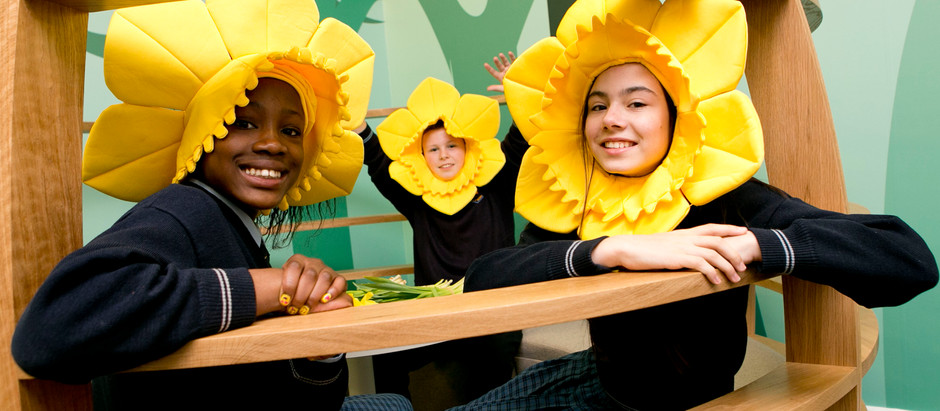 Daffodil Day 2016 kicks off at Dell with MegaDojo for local kids