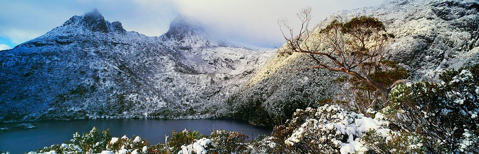 Clearing Storm Cradle Mountain