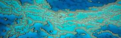 Reef Patterns 2