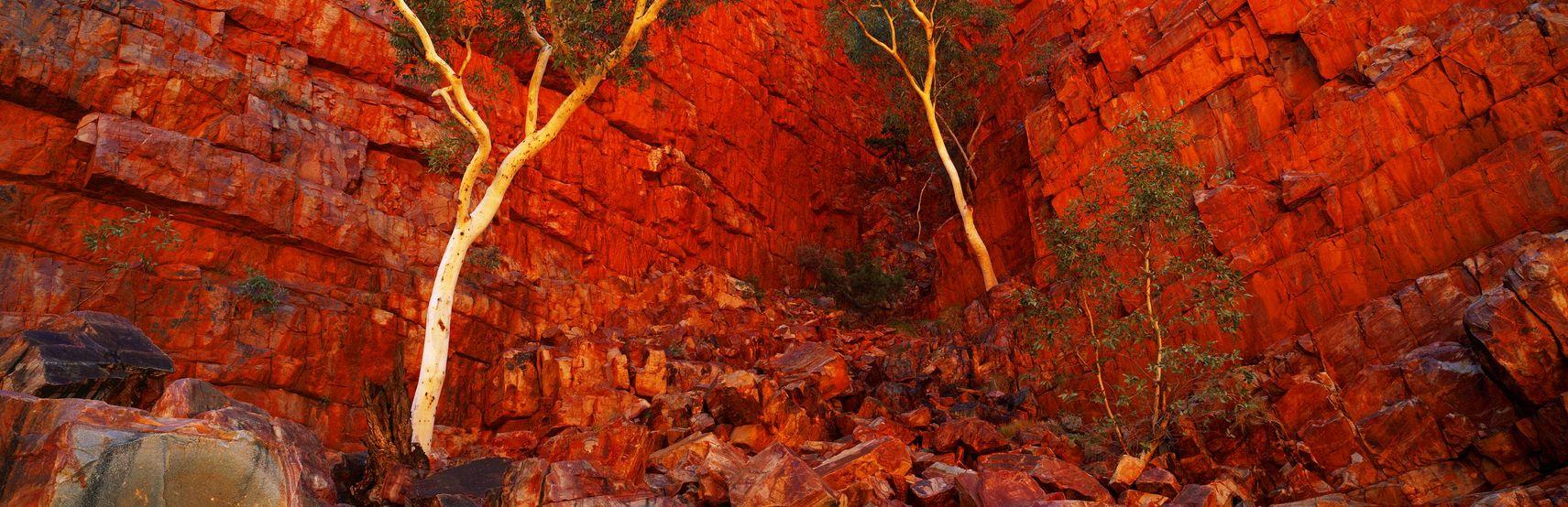 Ghost Cliffs