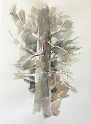 Purves - _Cedar_ 2020 22_x15_ (watercolor).JPG