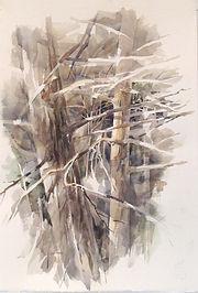Purves, _Winter Hemlocks_ 2021, 22_x15_, Watercolor on paper.jpg