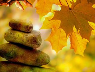 Coming November: YOGA + Guided Meditation