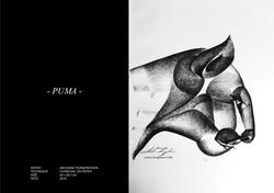 2016_Puma