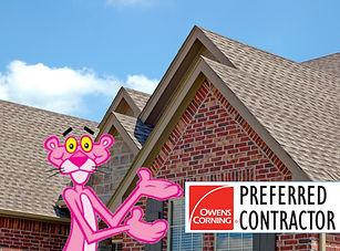 Pink Panther 2.jpg