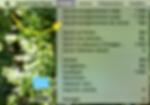 Capture d'écran 2020-04-02 à 12.36.47.