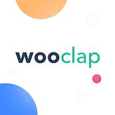 Wooclap caré.png