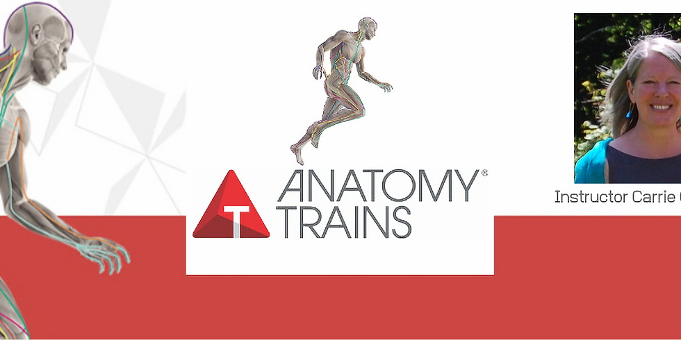 Anatomy Trains in Structure and Function (Registration Closed)